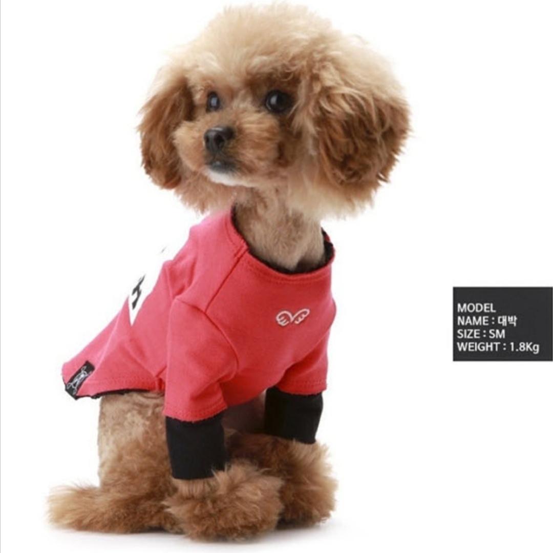 505 PA - Свитшот для собак