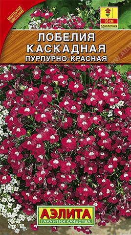Лобелия каскадная пурпурно-красная тип ц/п