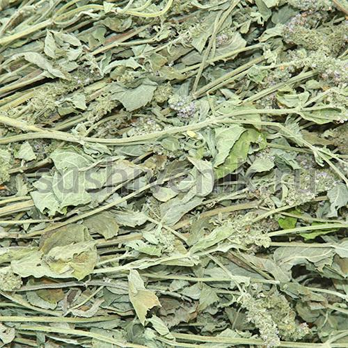 Листья чабреца