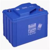 Аккумулятор FIAMM 6SLA160 ( 6V 160Ah / 6В 160Ач ) - фотография