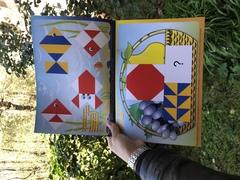 Альбом с заданиями к кубикам сложи узор Б.П. Никитин