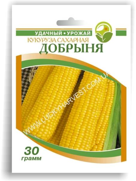 Кукуруза Добрыня