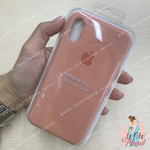 Чехол iPhone X/XS Silicone Case /flamingo/ фламинго 1:1