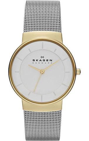 Купить Наручные часы Skagen SKW2076 по доступной цене