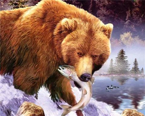 Алмазная Мозаика 5D 40x50 Медведь поймал рыбу
