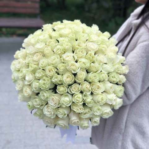 Букет 101 роза (белая)