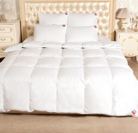 Одеяло пуховое зимнее Камилла 200х220
