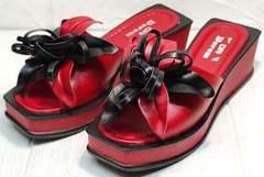 Квадратные босоножки шлепанцы женские кожаные Derem 042-921-02 Red Black.