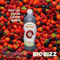 TopMax BioBizz 1 л