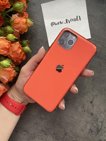 Чехол Iphone 11 Pro Glass Silicone Case Logo /orange/