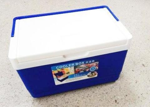 Термобокс CoolerBox 05L плоская крышка (РК)   (28*19*17)