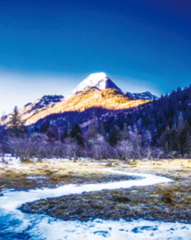 Алмазная Мозаика 40x50 Дорога в горы