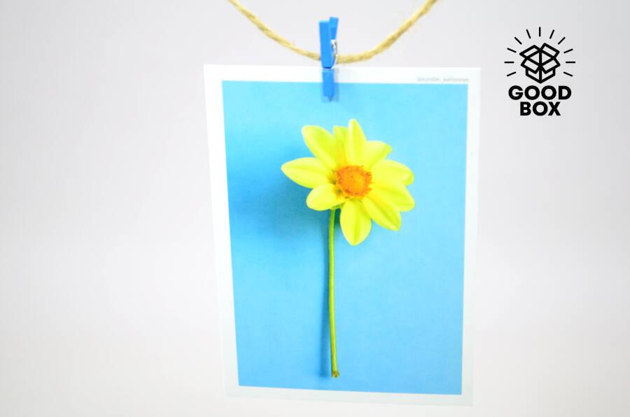 Солнечная подарочная открытка купить в Казахстане