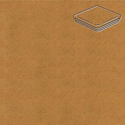 Ceramika Paradyz - Aquarius Brown, 330x330x11, артикул 5247 - Ступень угловая с капиносом