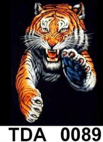 TDA 0089 Тигр синяя лапа XL