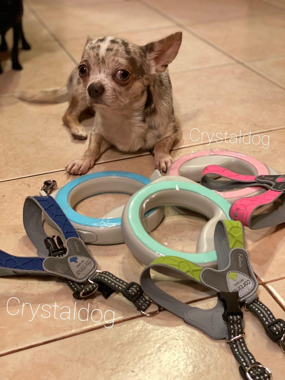 8127 - Рулетка-кольцо для собак