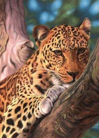 Алмазная Мозаика 5D 40x50 Тигрица на дереве