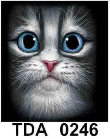 TDA 0246 Белый кот зеленые глаза  L