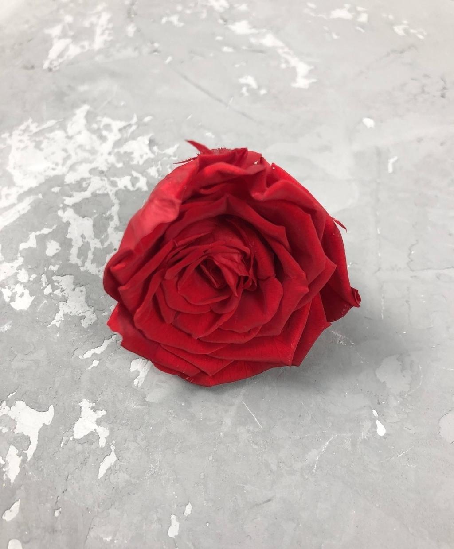 Роза классическая красная d=4-5 см