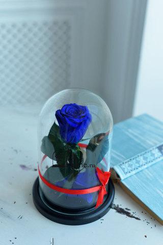 Роза в колбе Mini ОПТОМ Выс*Диам*Бутон (22*12.5*6см), Цвет темно-синий