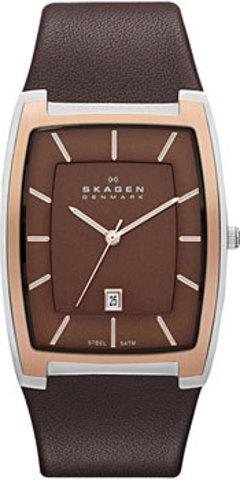 Купить Наручные часы Skagen SKW6004 по доступной цене
