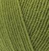 Пряжа Alize LANAGOLD FINE 485 (Зеленая черепаха)