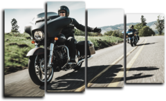 "Модульная картина ""Harley Davidson Riding"""