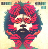 Incognito / Amplified Soul (2LP)