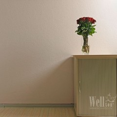Стеклообои Wellton Decor WD810 Розы