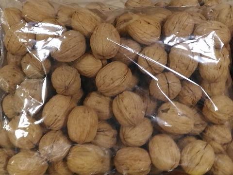 Грецкий орех в скорлупе Чили 1 кг