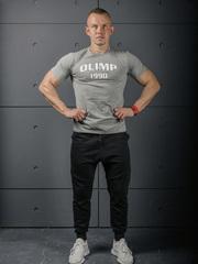 Мужская футболка Olimp Live & Fight 1990 Gray Melange