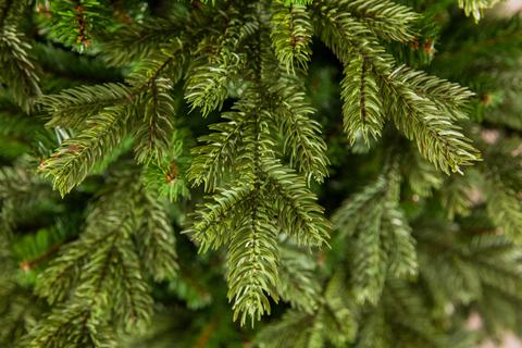 Искусственная елка Шервуд Премиум стройная 120см зеленая