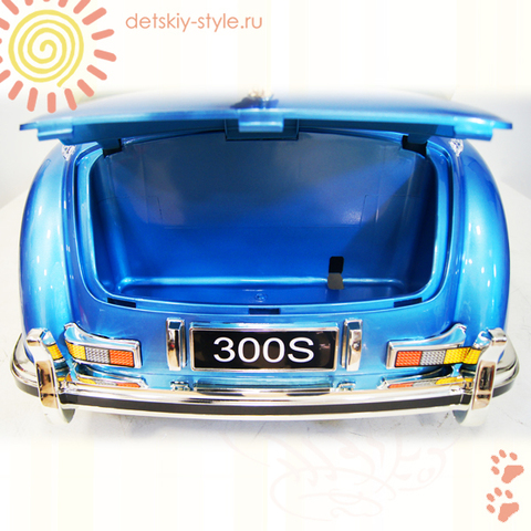 300S LS-618