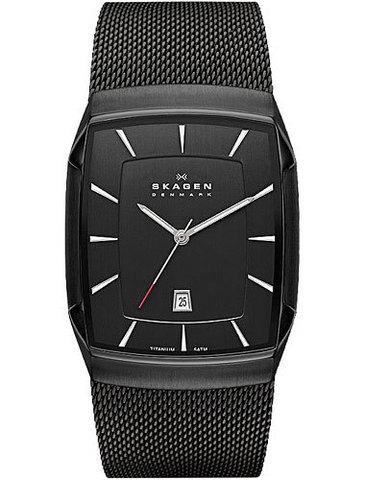 Купить Наручные часы Skagen SKW6011 по доступной цене