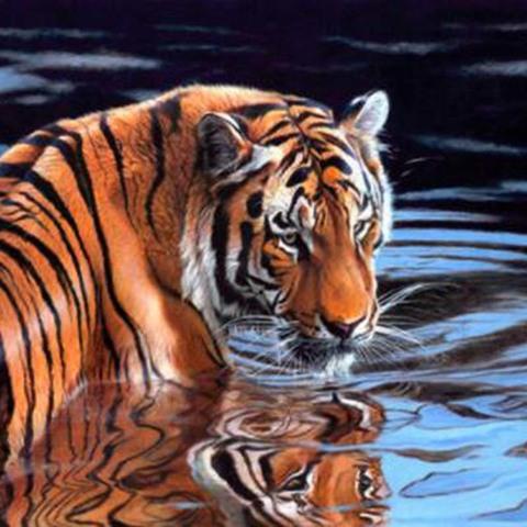 Алмазная Мозаика 5D 40x50 Тигр в воде