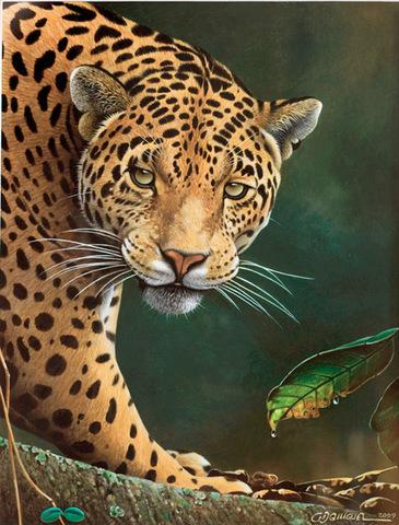 Алмазная Мозаика 5D 40x50 Леопард на прогулке