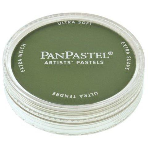 Ультрамягкая пастель PanPastel / YChromium Oxide Green Shade