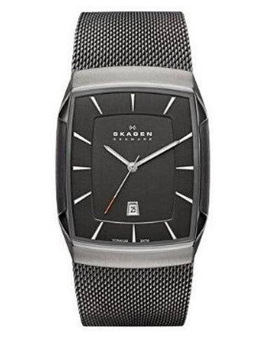 Купить Наручные часы Skagen SKW6012 по доступной цене