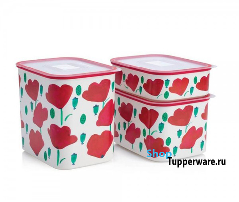 Набор акваконролей Маки tupperware