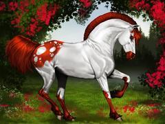 Картина раскраска по номерам 40x50 Бело-рыжий конь
