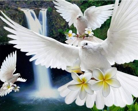 Алмазная Мозаика 40x50 Белые голуби у водопада (арт. S186)