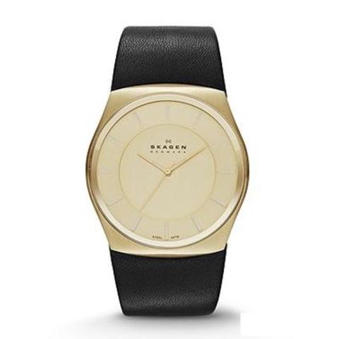 Купить Наручные часы Skagen SKW6018 по доступной цене