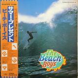The Beach Boys / The Beach Boys (2LP)