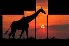 """Модульная картина """"Жираф на закате солнца"""""""
