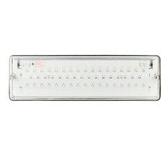 Светодиодный аварийный светильник PL EML 2.0 – вид спереди
