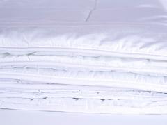 Одеяло всесезонное 220х240 Стебель Бамбука