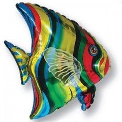 F Тропическая рыбка, 25