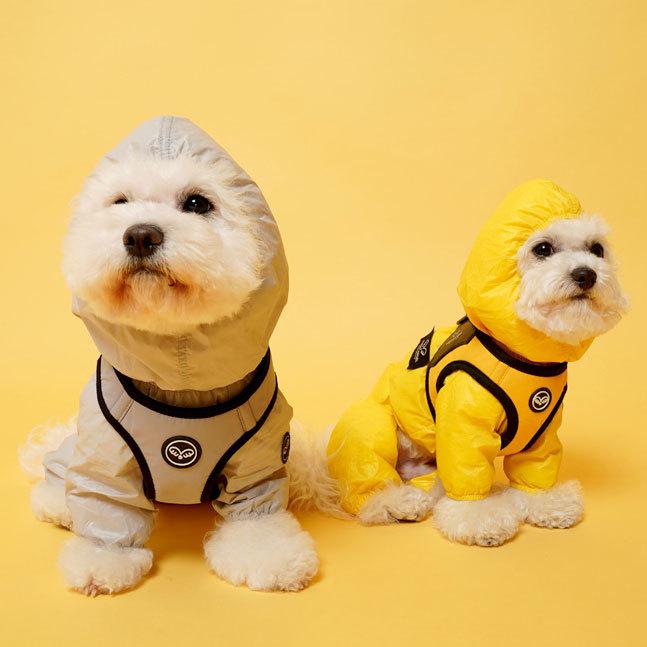 дождевики для маленьких собак