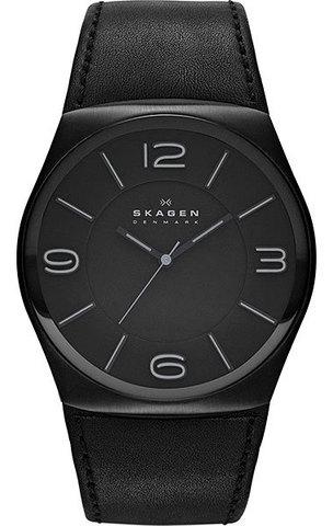 Купить Наручные часы Skagen SKW6043 по доступной цене