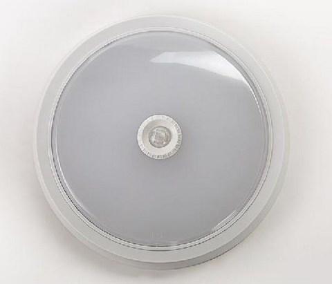 СПБ-2 5Вт 160-260В 4000К 400лм IP40 155мм белый (LLT/ASD)